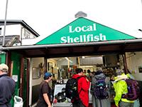 Local Shellfish