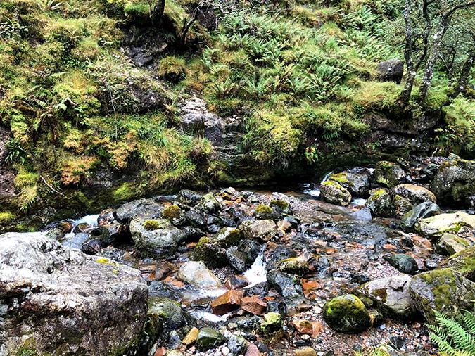 מסלול סלעי ומים זורמים בכל מקום